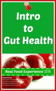 Intro to Gut Health